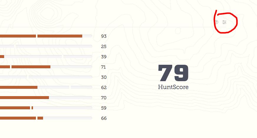 Score Feedback